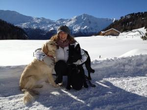 urlaub mit hund pension residence obkircher